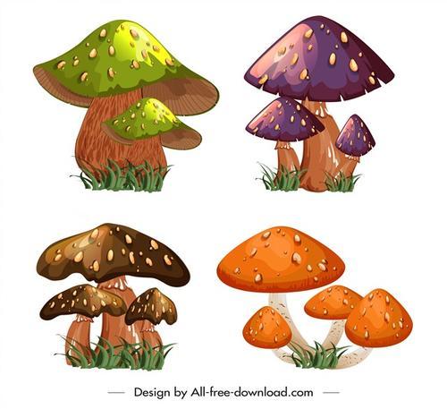 彩色蘑菇插画