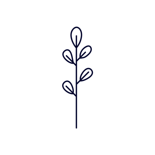 简约树叶图案