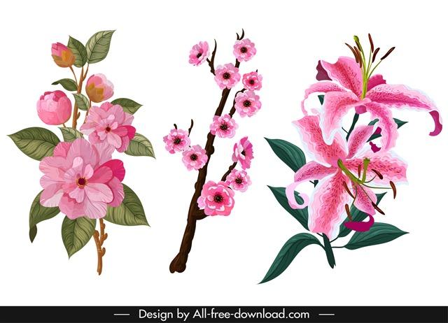 各种粉色花朵