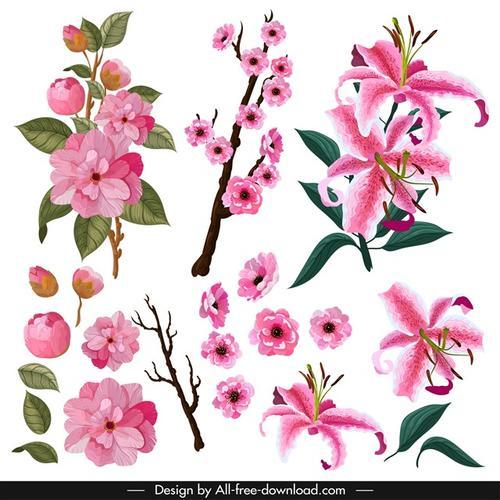 花卉免抠图