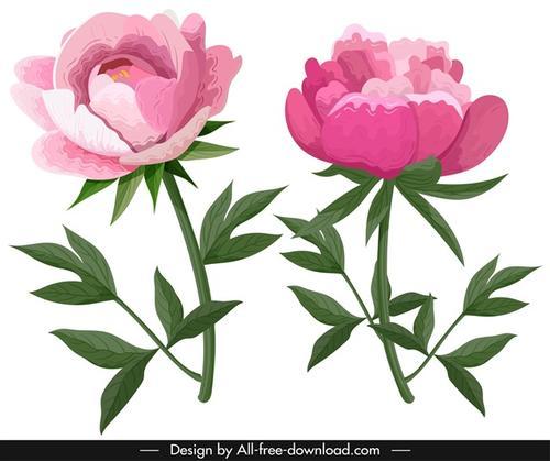 粉色花卉装饰