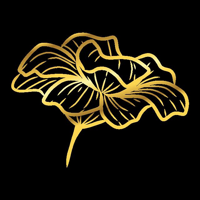 金色花朵矢量图
