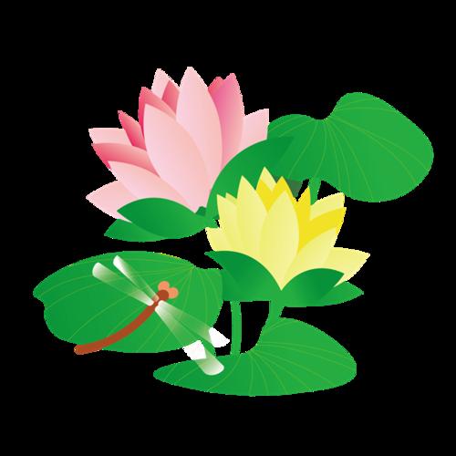蜻蜓荷塘插画