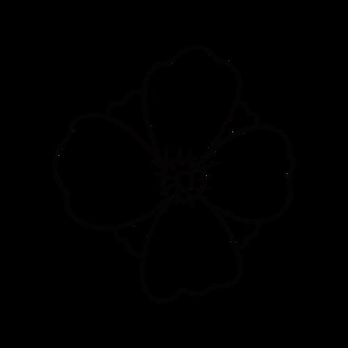 简约黑白花朵图片