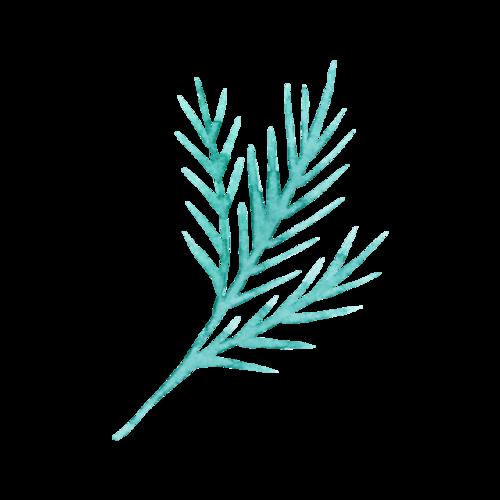 水彩叶子设计图片
