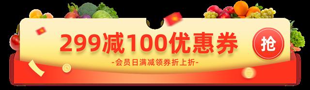 299减100优惠券banner