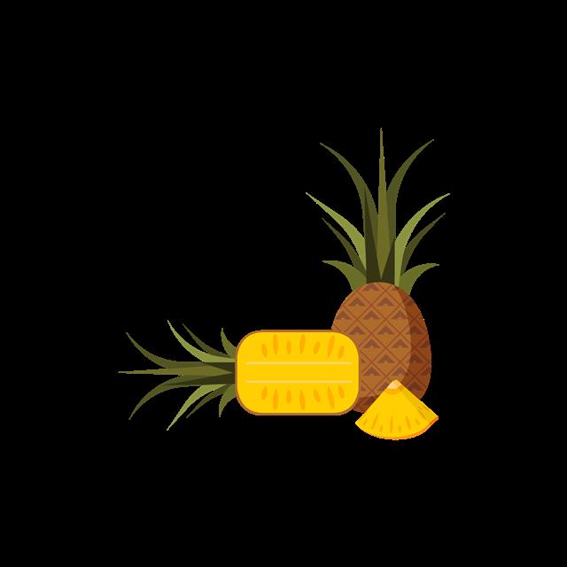 热带水果凤梨