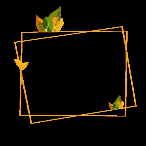 植物装饰几何边框
