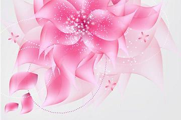 透明花卉背景