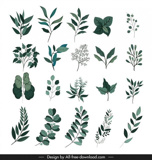 卡通树叶装饰图案合集
