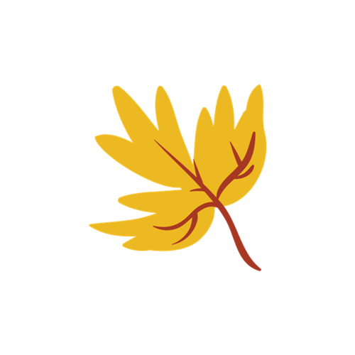 黄色枫叶矢量图