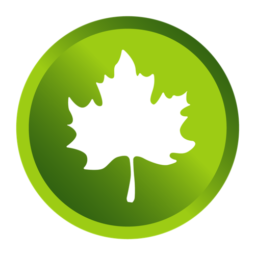 绿色枫叶logo