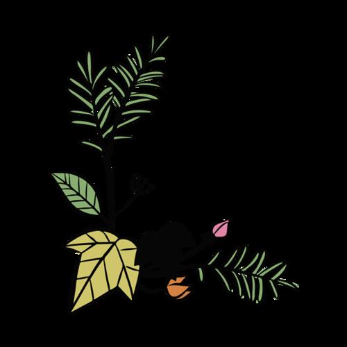 绿色清新植物边框