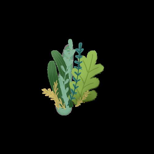 绿色花草植物图案