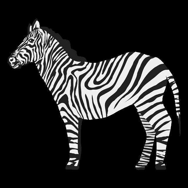 写实手绘斑马