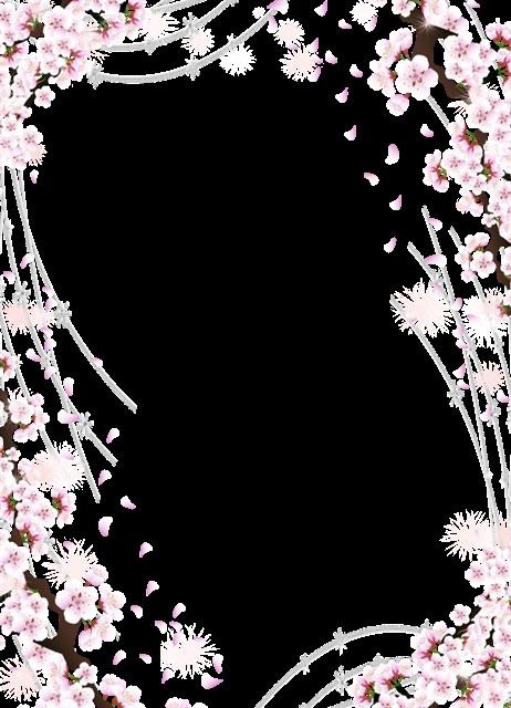 小清新樱花底纹边框
