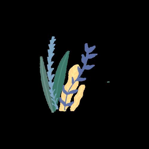 水彩手绘植物装饰