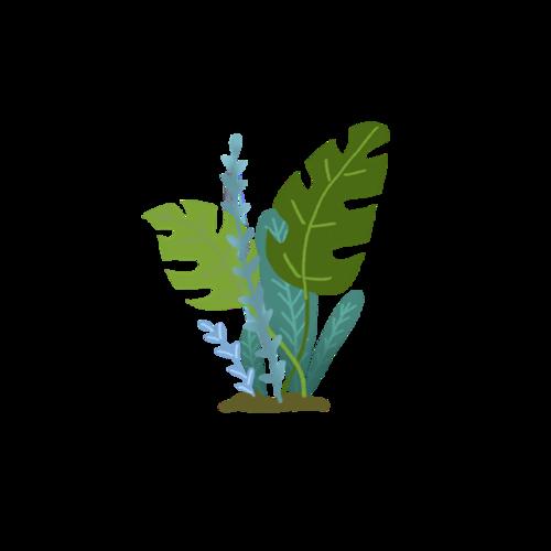 艺术风植物装饰