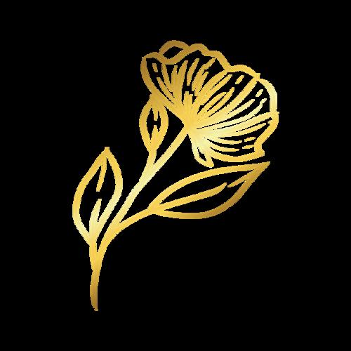 玫瑰金色花