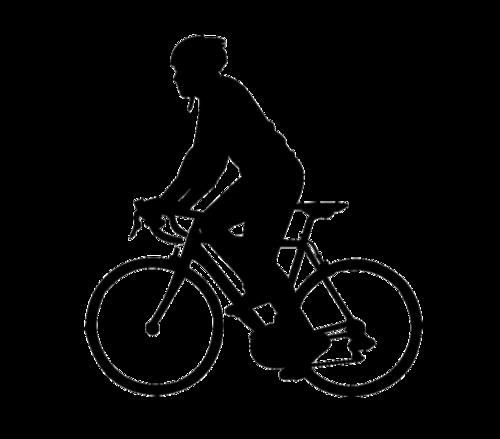 骑自行车剪影