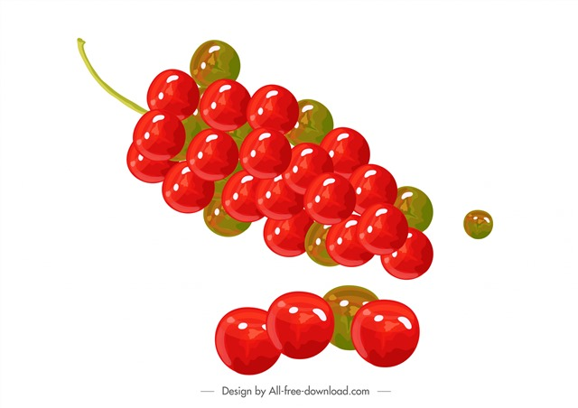 水果李子插画