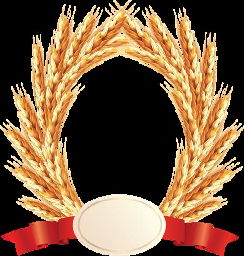 金色麦穗边框元素