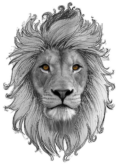 霸气狮子头像