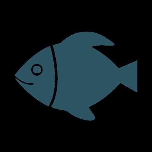 简约小鱼矢量图