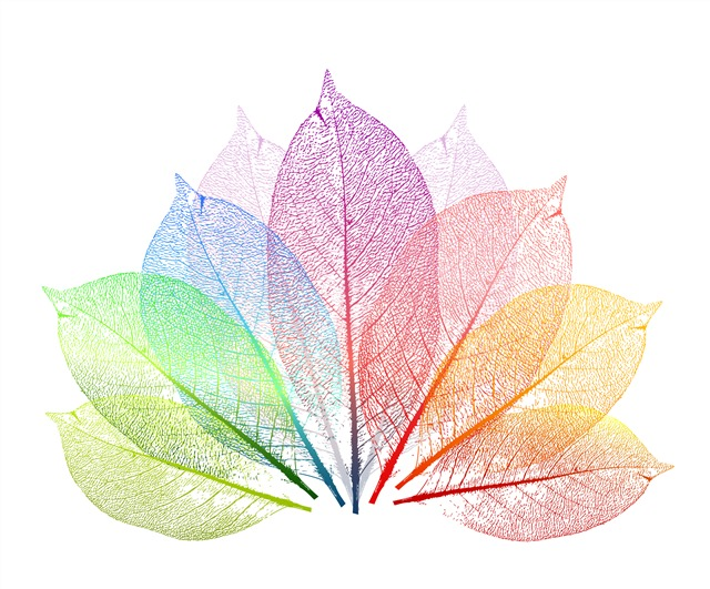彩色透明树叶矢量图