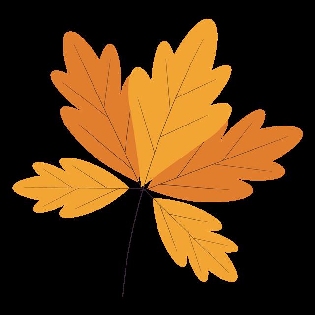 秋天黄色树叶