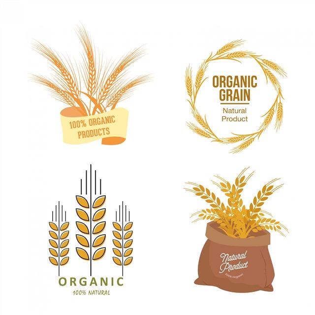 小麦logo图片