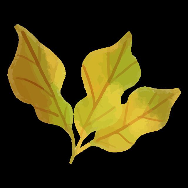 卡通秋季树叶