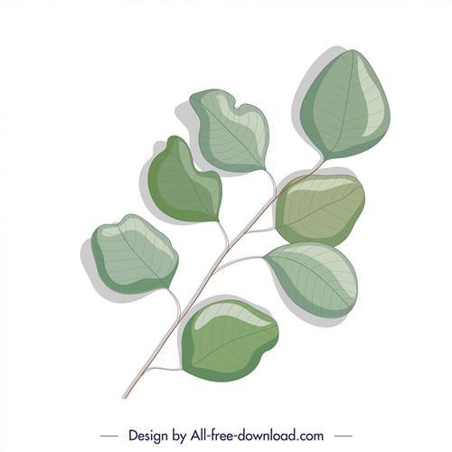 生态学植物绿叶