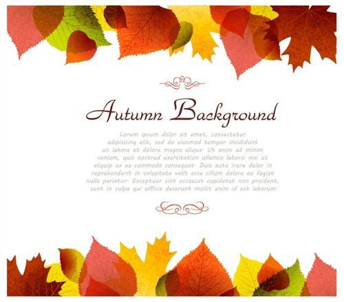 秋天树叶背景插图