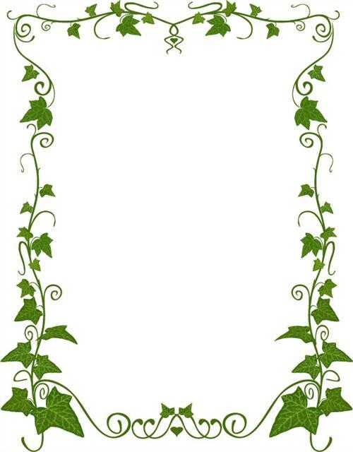 绿色叶子藤蔓边框