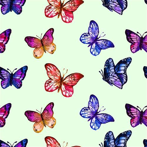蝴蝶创意手绘插画