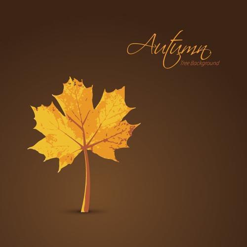 秋季枫叶背景