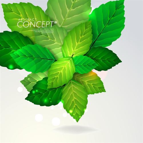 绿色叶子元素背景图片