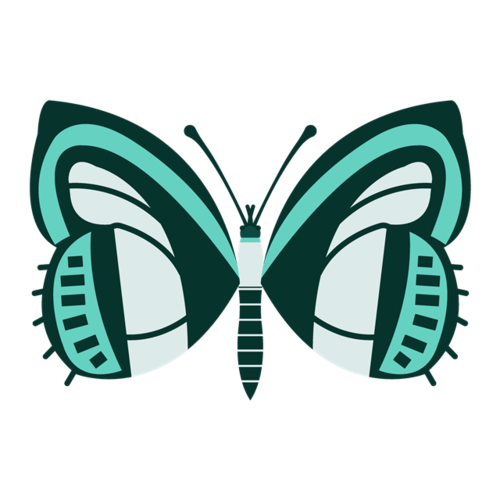 面部彩绘蝴蝶图案