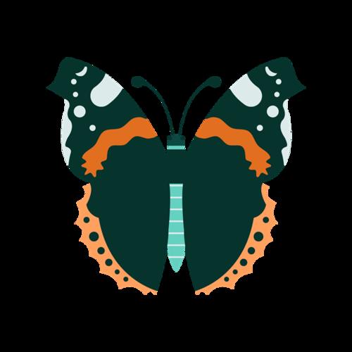彩绘蝴蝶图案