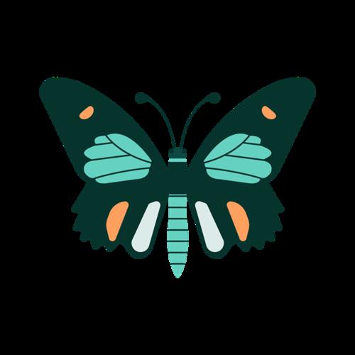 矢量彩绘蝴蝶