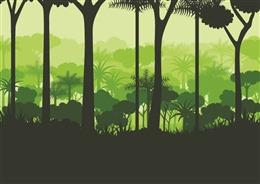 森林插画背景图片