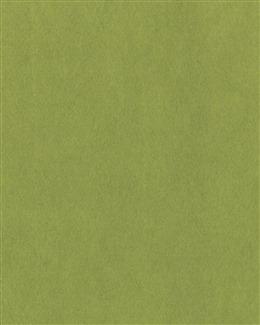 绿色磨砂背景图