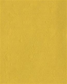 2020金色背景图片
