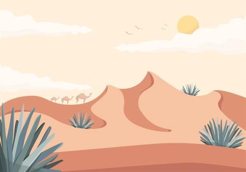 沙漠风景插画