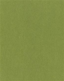 高清绿色背景图片