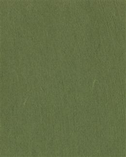 绿色纯色手机壁纸