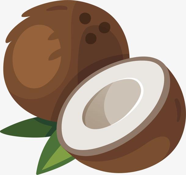 椰子果卡通图片