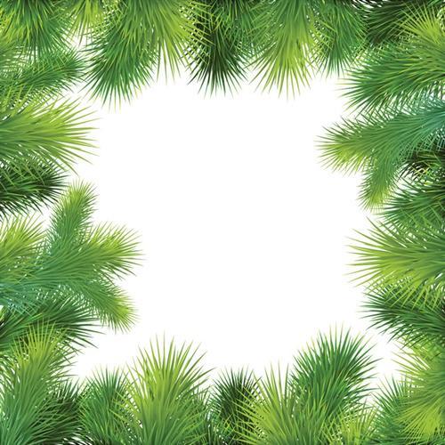 圣诞节松树叶相框矢量