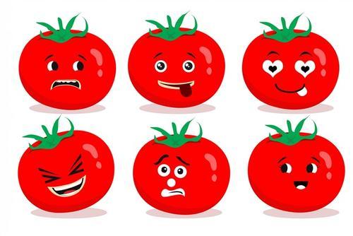 番茄可爱表情合集